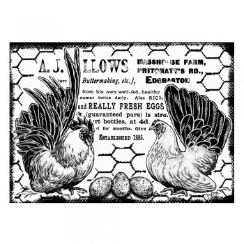 CI-289 - 'Fresh Eggs and Chickens' Art Rubber Stamp, 95mm x 70mm