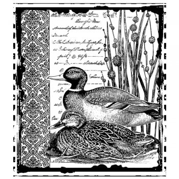 Crafty Individuals CI-297 - 'Mallard Duck Pair' Art Rubber Stamp, 78mm x 89mm