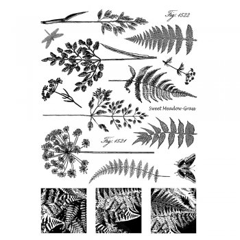 Crafty Individuals CI-207 - 'Ferns and Grasses' Art Rubber Stamps, 96mm x 137mm