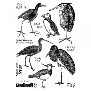 Crafty Individuals CI-349 - 'Quirky Birds' Art Rubber Stamps, 96mm x 137mm
