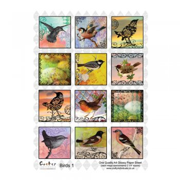 Crafty Individuals A4 Glossy Sheet - 'Birds 1'