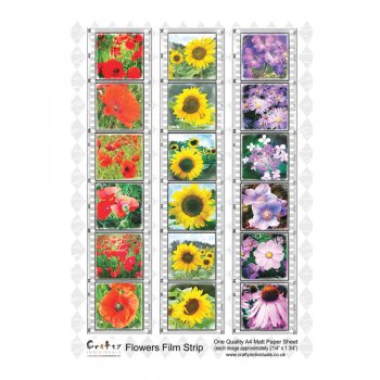 Crafty Individuals A4 Matt Sheet - 'Flowers Film Strip'