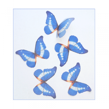 Must Haves - '5 Blue and White Organza Butterflies', 50mm x 35mm