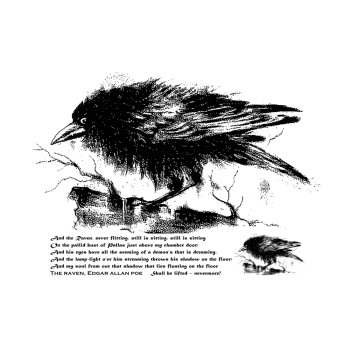Crafty Individuals CI-501 - 'The Raven' Art Rubber Stamp, 137mm x 96mm