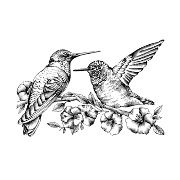 Crafty Individuals CI-509 - 'Hummingbirds amongst Blossoms' Art Rubber Stamp, 110mm x 73mm