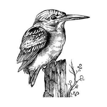 Crafty Individuals CI-510 - 'Kingfisher' Art Rubber Stamp, 70mm x 82mm