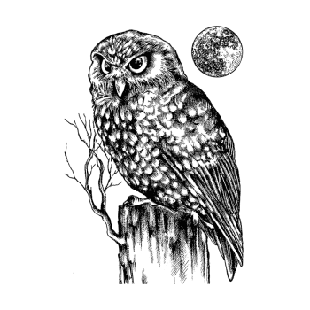 Crafty Individuals CI-512 - 'Owl and Moon' Art Rubber Stamp, 62mm x 90mm