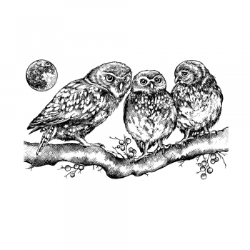 Crafty Individuals CI-513 - 'Owl Family' Art Rubber Stamp, 110mm x 68mm