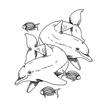 Crafty Individuals CI-551 - 'Dolphins and Little Fishes' Art Rubber Stamp, 87mm x 100mm