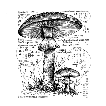 Crafty Individuals CI-574 - 'Counting Toadstools' Art Rubber Stamp, 80mm x 96mm