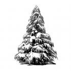 CI-462 - 'Large Christmas Tree' Art Rubber Stamp, 69mm x 95mm