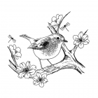 CI-483 - 'Blossom Robin' Art Rubber Stamp, 89mm x 83mm