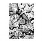 CI-496 - 'Seaside Treasures' Art Rubber Stamp, 96mm x 136mm
