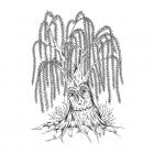 CI-581 - 'Wishing Willow' Art Rubber Stamp, 95mm x 135mm