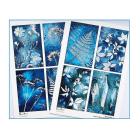 A5 Matt Sheets x 2 - 8 Themed Botanical Images