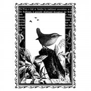 CI-191 - 'Little Perched Wren' Art Rubber Stamp, 65mm x 90mm