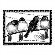 CI-193 - 'Four Pretty Birds' Art Rubber Stamp, 72mm x 52mm