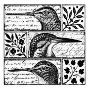 CI-265 - 'Quirky Birds' Art Rubber Stamp, 80mm x 80mm