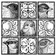 CI-266 - 'Boxy Birds' Art Rubber Stamp, 82mm x 82mm