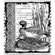 CI-297 - 'Mallard Duck Pair' Art Rubber Stamp, 78mm x 89mm