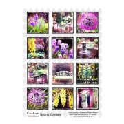 A4 Glossy Sheet - 'Secret Garden 1'