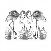 CI-473 - 'Pretty Flamingos' Art Rubber Stamps, 137mm x 96mm