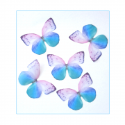 Must Haves - '5 Pink and Blue Organza Butterflies', 50mm x 35mm