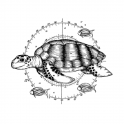 CI-550 - 'Sea Turtle and Little Fishes' Art Rubber Stamp, 110mm x 91mm