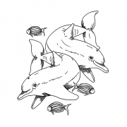 CI-551 - 'Dolphins and Little Fishes' Art Rubber Stamp, 87mm x 100mm