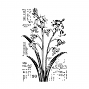 CI-572 - 'Counting Bluebells' Art Rubber Stamp, 85mm x 140mm
